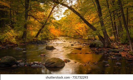 Autumn foliage along the Musconetcong River in Stephens State Park, Hackettstown, NJ