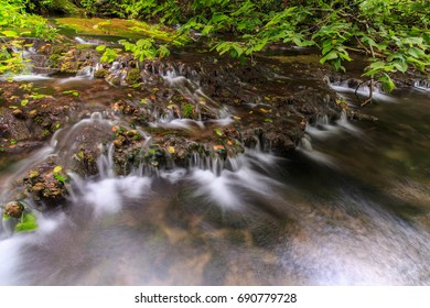 Autumn foliage and beautiful stream in a wild forest