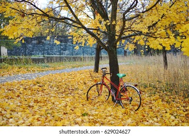 Autumn foliage and bicycle