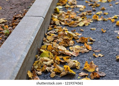 autumn foliage closeup on road asphalt about a stone border