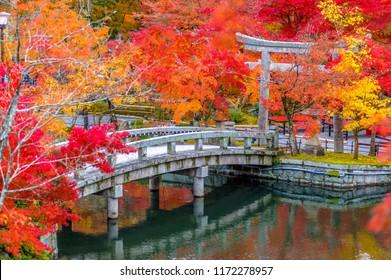 autumn foliage at Eikando Temple in Kyoto, Japan