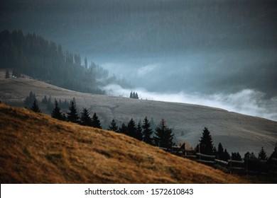 Follaje y niebla otoñales. Montañas macizas con árboles verdes. Concepto creativo y vintage