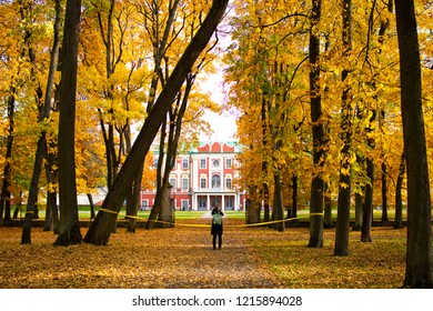Autumn Foliage in Kadriorg Park - Tallinn, Estonia