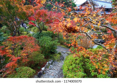 Autumn foliage moss garden in Japan - red momiji leaves (maple tree) in a Japanese tea garden of Yoshikien, Nara, Japan.
