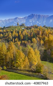 Autumn foliage in the mountains on a sunny day