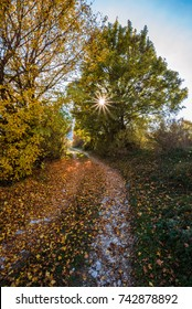 The autumn with foliage in the National Park of Abruzzo, Lazio and Molise (Italy) - An italian mountain natural reserve, with little old towns, the Barrea Lake, Camosciara, Forca d'Acero, Val Fondillo