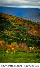 Autumn foliage New York State