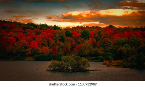 Autumn foliage in NY state