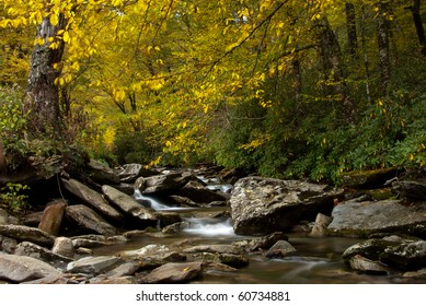 Autumn foliage over Little Pigeon River in Smoky Mountains National Park