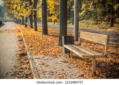Autumn foliage in the park. October, Moscow