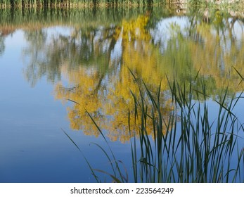 Autumn Foliage reflecting on Lake