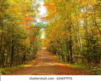 Autumn Foliage Road in North Woods ~ Nevis, Minnesota