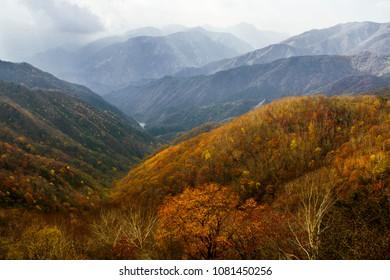 Autumn foliage seen from the carpark at Mount Hangetsuyama, Nikko, Japan.