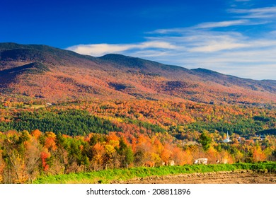 Autumn foliage with Stowe Village and cows, Stowe, Vermont, USA