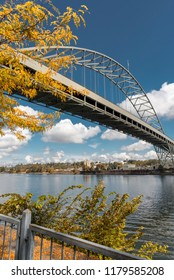 Autumn foliage under the Fremont Bridge in Portland, Oregon