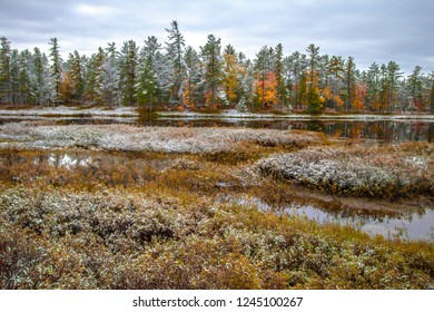 Autumn Foliage And Winter Wonderland. Beautiful winter forest with remnants of fall color on a wilderness lake in Tahquamenon Falls State Park in the Upper Peninsula of Michigan.