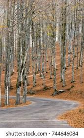 Autumn in Forca D'Acero, Abruzzo National Park, Italy