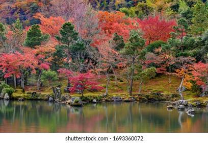 Autumn forest of Arashiyama ,still water reflection  in World HeritageTenryuji Temple Arashiyama Kyoto.