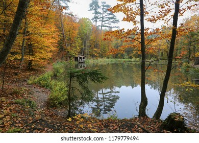 Autumn forest by the lake and wooden hut