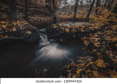 Autumn in forest by a river. A special and magical scene, fallen leaves, dark tones and flowing water. Time and place to relax and unwind. Beautiful time of the year, very popular season.