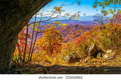 Autumn forest cave entrance. Forest cave entrnace view. Autumn forest cave entrance panorama. Autumn forest cave view