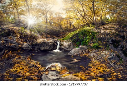 Autumn forest cold creek view. Forest creek in autumn. Autumn forest creek. Cold creek in autumn forest
