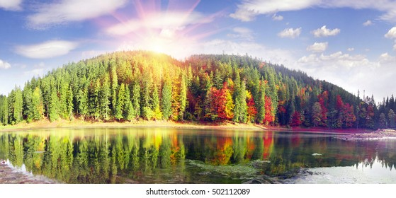 Autumn forest colorful over the water surface of a mountain lake, the largest in the Carpathian Mountains in the background. The famous pond attracts tourists  travelers to its shores