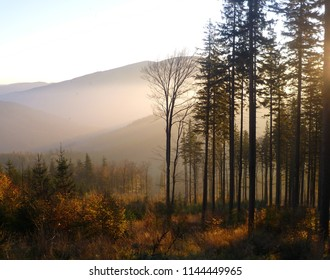 autumn forest and hills in the Beskydy mountains (Czech republic) view from Lysa hora during sunset