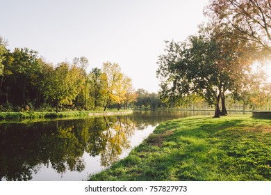 Autumn forest and lake