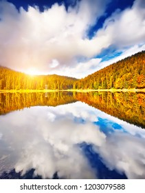 The Autumn forest lake reflection landscape. Forest lake trees in autumn season panorama. Autumn lake in autumn forest.