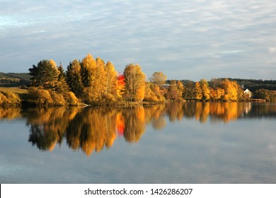 Autumn forest, lake reflection landscape