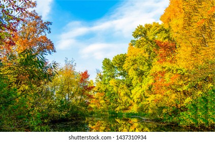 Autumn forest lake trees landscape. Autumn forest lake trees. Autumn forest lake. Forest lake in autumn season