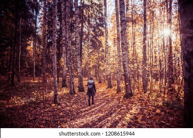 autumn forest landscape yellow leaves lie on the ground, various plants, the girl looks at the forest
