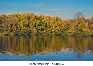 Autumn forest on the river bank.