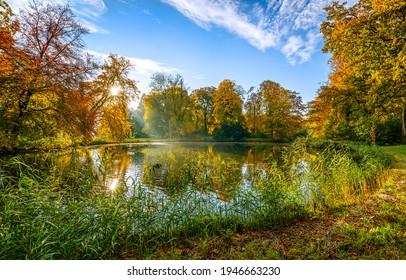 Autumn forest pond landscape. Pond un autumn forest. Autumn pond landscape