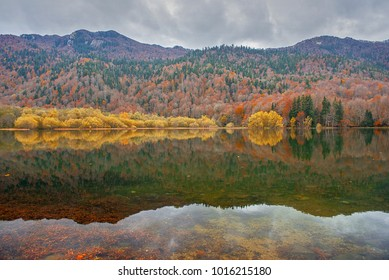 Autumn forest with reflection on Biogradsko lake in Montenegro