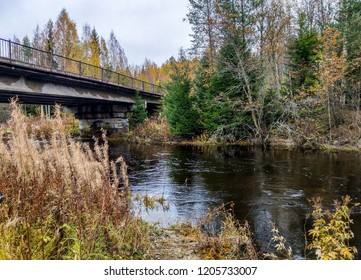 Autumn forest river bridge landscape. Forest river bridge in autumn season. Autumn forest river bridge view. Forest river landscape