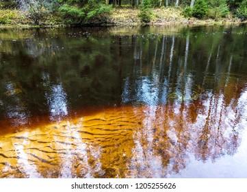Autumn forest river dark water view. Forest river water. Autumn forest river water. Forest river in autumn season