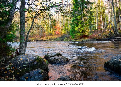 Autumn forest river landscape. Forest river in autumn season. Autumn forest river stones scene. Autumn forest river water view