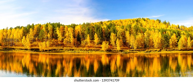 Autumn forest river reflection panoramic landscape. Golden autumn forest river panorama. Autumn forest river reflection panoramic view. Panorama of autumn forest river reflection