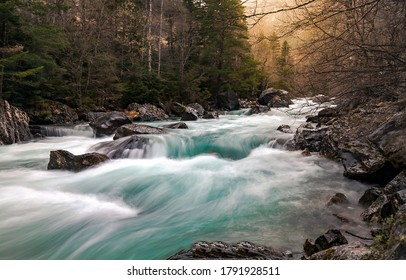 Autumn forest river stream. River wild in forest. Forest river rapids