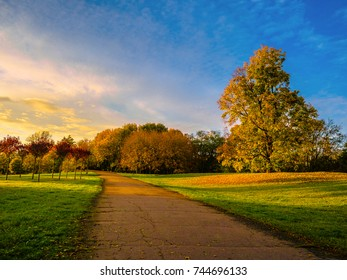 Autumn forest scenery with rays of warm light illumining the gold foliage, Gorgeous autumn landscape of a scenic forest with lots of warm sunshine, Beautiful romantic alley in a park.