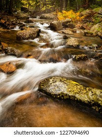 An autumn forest stream flowing heavily due to rain
