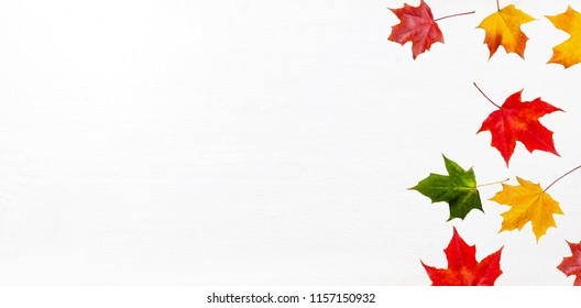 Autumn frame composition made of falling  autumn leaves on white background with Copy space.  Flat lay, top view