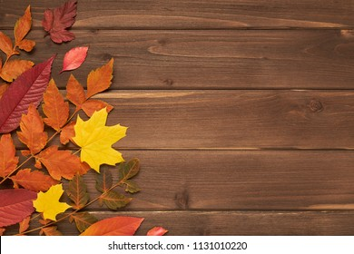 Autumn frame for your idea and text. Autumn fallen dry leaves of yellow, red, orange, laid out on the left side of the frame on an old wooden board of brown color. The pattern of autumn