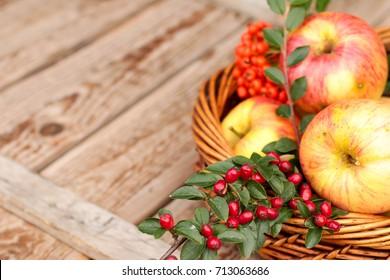 Autumn fruit: apples, rose hips and rowan
