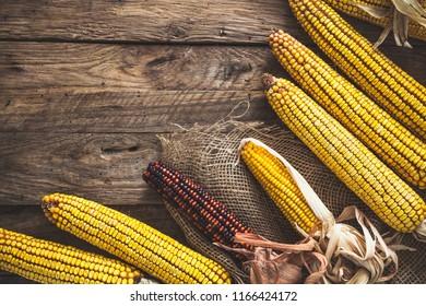 Autumn fruit with corn on wood. Thanksgiving autumn background