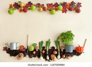 Autumn fruits growing in soil patch with apple orchard frame
