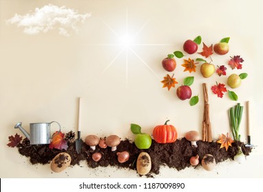 Autumn fruits growing in soil patch with apple tree