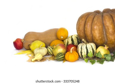 Autumn fruits and vegetable collection
